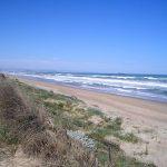 La playa de la Devesa del Saler o de la Malladeta en Valencia