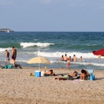 Playa Arbre del Gos en Valencia