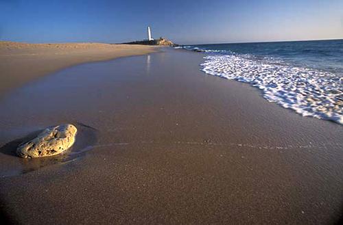 Calas del Faro de Trafalgar, La Aceitera y La Zahora,Caños de Meca, Andalucía