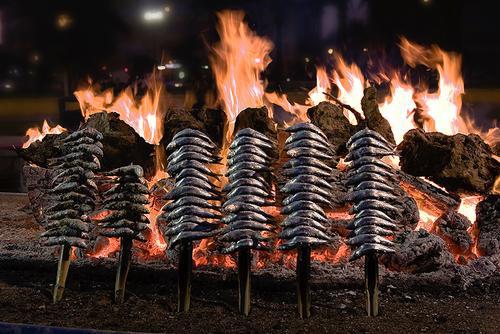 misericordia sardinas