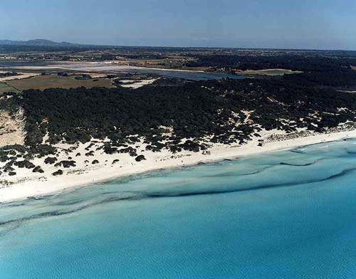 Playa-de-Es-Trenc-2