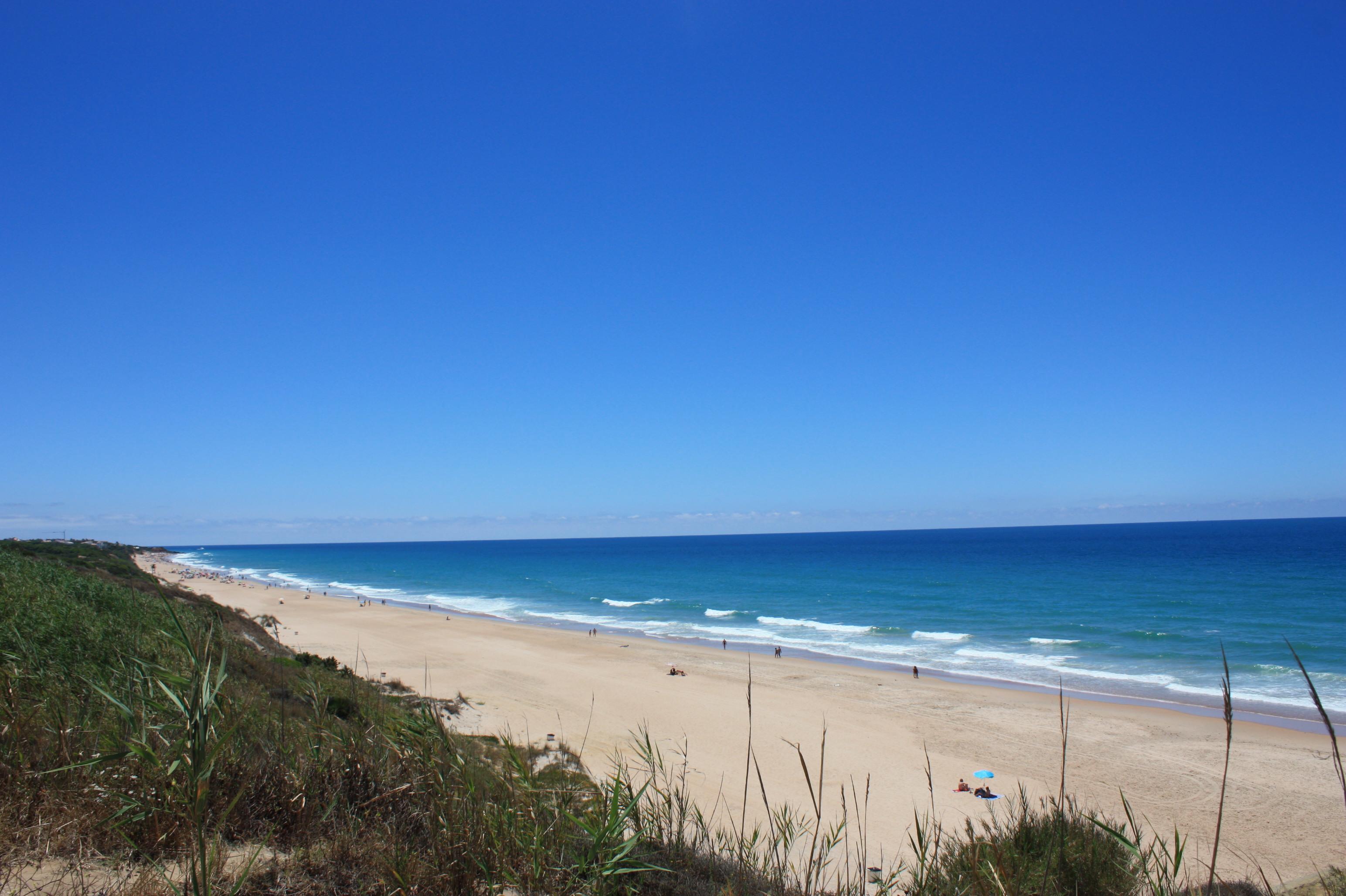 playa-roche